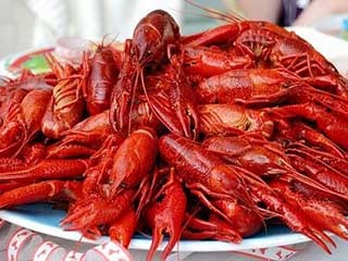 Red Lobsters on Plate